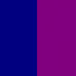 Navy/Purple